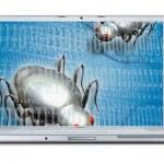 Peste 30 de milioane de vulnerabilități detectate pe computerele utilizatorilor
