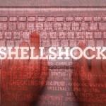"""Alertă cu privire la vulnerabilitatea """"Shellshock"""" ce afectează interfaţa GNU Bash din cadrul sistemelor de operare de tip UNIX/Linux şi Mac OS X"""